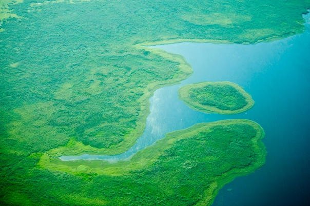 The Sudd, where the Nile spill outside its banks to form one of the worlds largest wetlands in South Sudan.