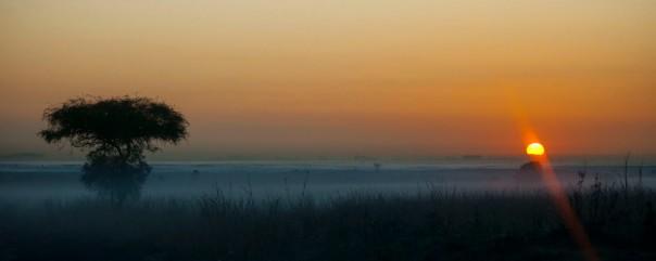 Dawn in Kenya