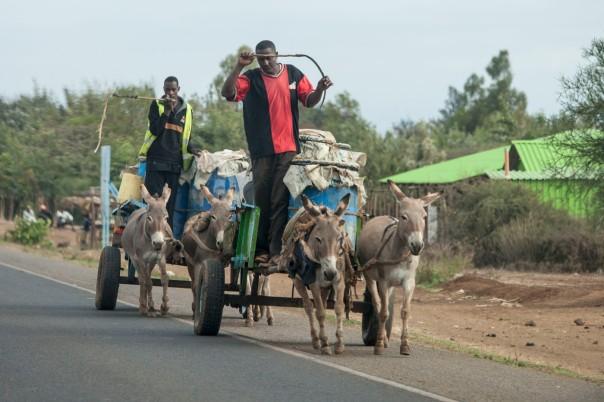 Commercial vehicle, Embu, Kenya