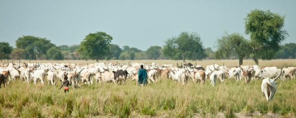 A cattle herder on the plains of South Sudan