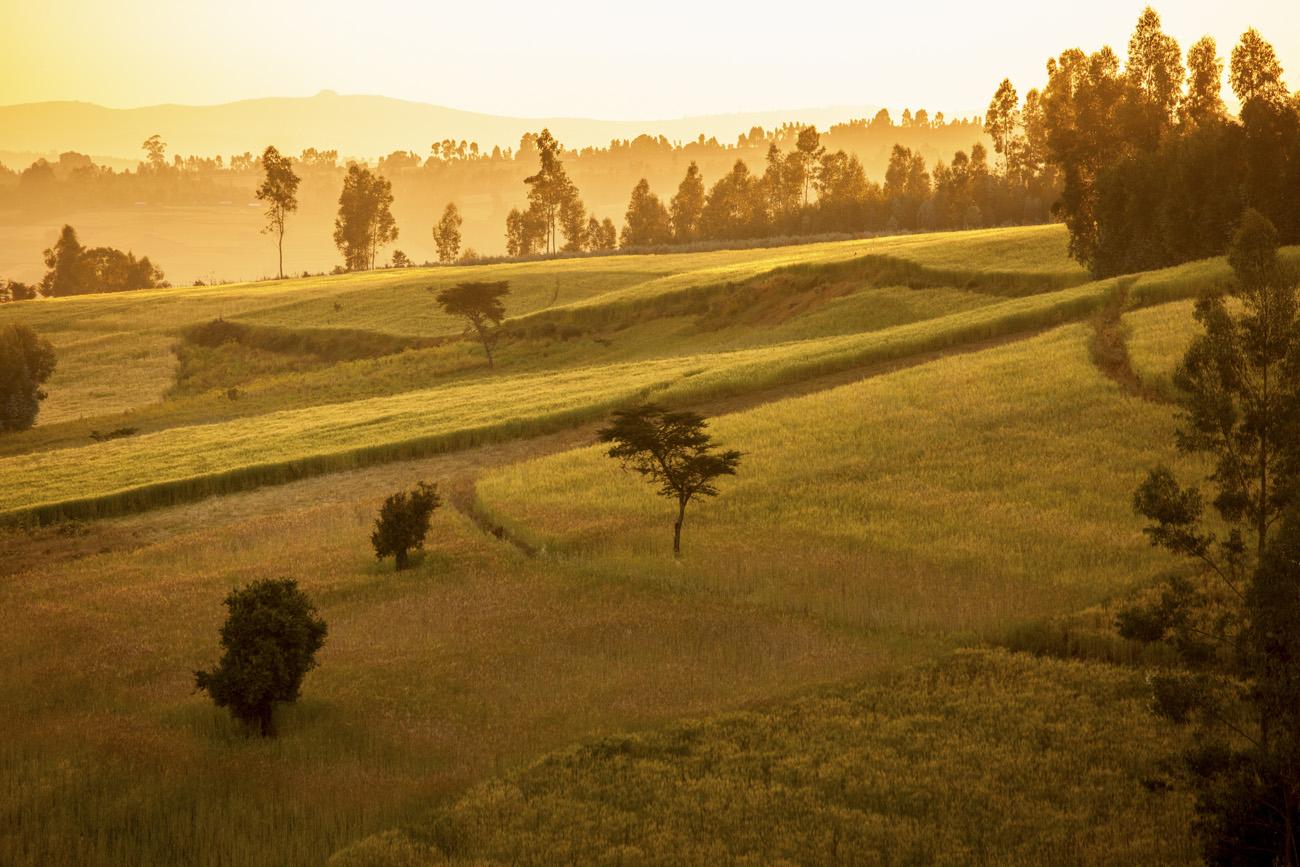 orange glow of sunrise over the Ethiopian highlands