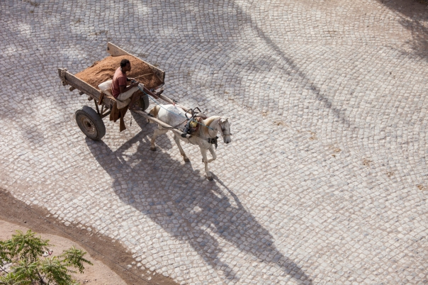A man drives his horse and wagon over the cobblestones in Dire Dawa, Ethiopia. Possible art piece.