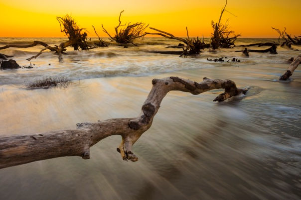 Time exposure of waves and driftwood in the ocean at sunset